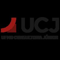 UFMG Consultoria Júnior