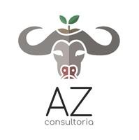 AZ Consultoria