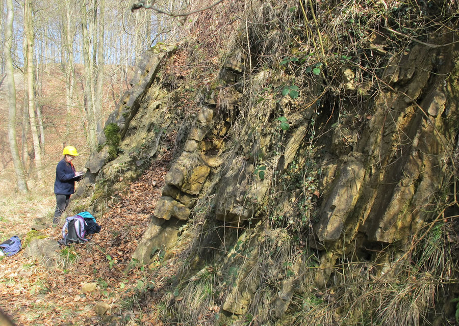 Mapeamento Geológico